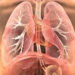 Coronavirus: cette méthode vous permet de déterminer si les poumons ont été guéris