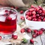 Les avantages du jus de canneberge – une excellente idée pour la santé